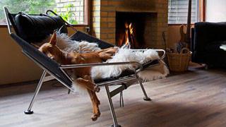 如何选择合适的家居休闲椅